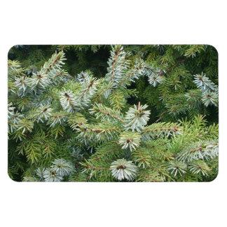 松の木 マグネット