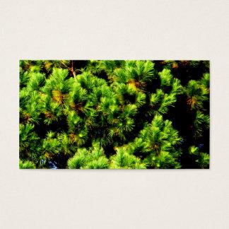 松の木 名刺