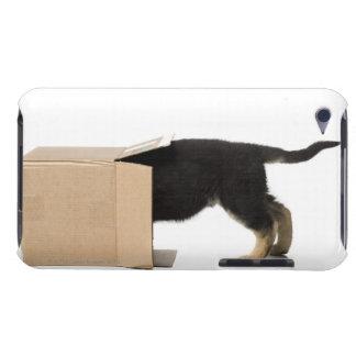 板紙箱の子犬 Case-Mate iPod TOUCH ケース