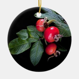 果実が付いているバラの実の束 セラミックオーナメント