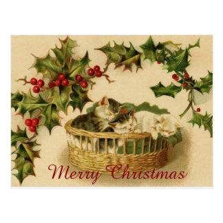 果実と眠っているヴィンテージのクリスマスの子ネコ ポストカード