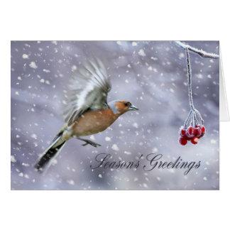 果実に飛んでいるズアオアトリが付いているクリスマスカード カード