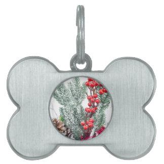 果実のきのこの装飾が付いているクリスマスの皿 ペットネームタグ