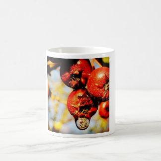 果実のマグ コーヒーマグカップ
