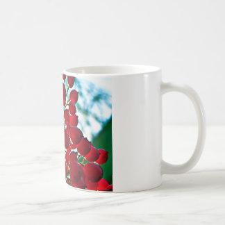果実の束 コーヒーマグカップ