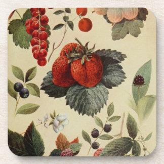 果実の果実のコースター コースター