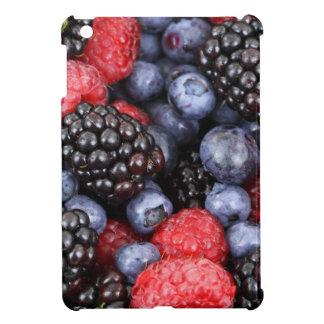 果実の背景 iPad MINI CASE