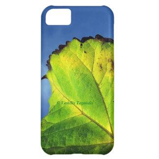 果実の葉および秋色 iPhone5Cケース