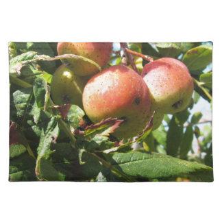 果樹のSorbs。 タスカニー、イタリア ランチョンマット