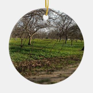 果樹園の木の景色 セラミックオーナメント
