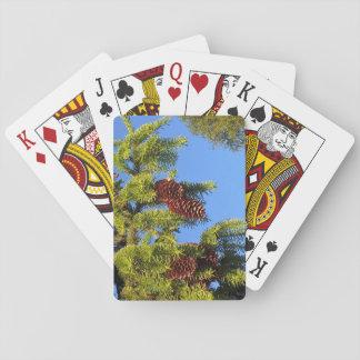 枝が付いている自然の森林写真 トランプ