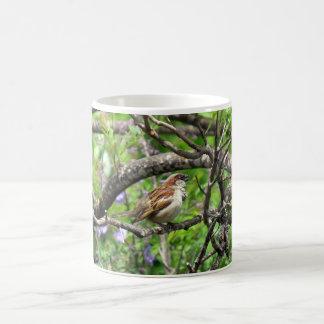 枝のすずめ コーヒーマグカップ