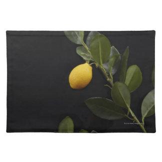 枝のまだレモン ランチョンマット