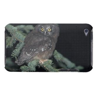枝の寒帯のフクロウ Case-Mate iPod TOUCH ケース