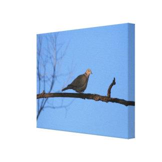枝キャンバスのプリントの鳩 キャンバスプリント