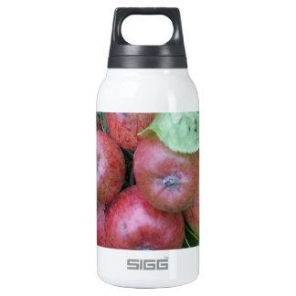 枝デザインのりんごの束 断熱ウォーターボトル