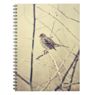 枝ノートに坐っている甘く小さい鳥 ノートブック
