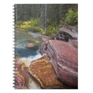 枯れ木は秋のレイノルズ入り江で落ちます ノートブック