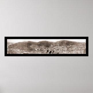 枯れ木SDの写真1902年 ポスター