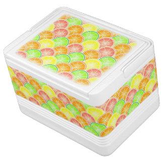 柑橘類の帆立貝パターン クーラーボックス