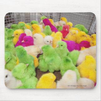染料によって着色される市場のペンのベビーのひよこ マウスパッド
