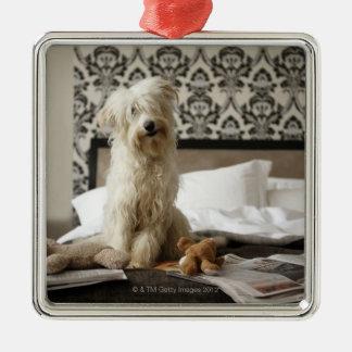 柔らかいおもちゃおよび新聞が付いているベッドで置かれることの後をつけて下さい メタルオーナメント