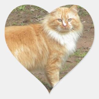 柔らかいオレンジおよび白い子猫 ハートシール