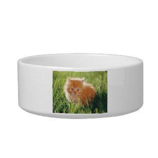 柔らかいオレンジ子ネコ猫のペットボウル 猫用ご飯皿