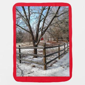 柔らかい冬毛布 ベビー ブランケット