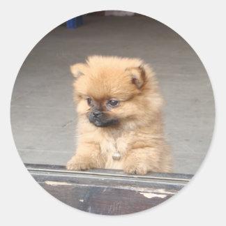 柔らかい子犬 ラウンドシール