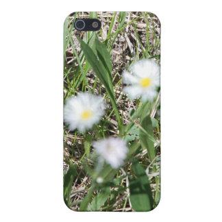 柔らかい焦点のデイジーのiPhone 5cケース iPhone 5 Cover