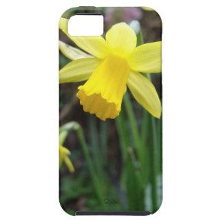 柔らかい焦点の黄色いラッパスイセン iPhone SE/5/5s ケース