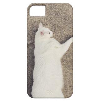 柔らかい猫 iPhone SE/5/5s ケース