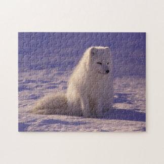 柔らかい雪のキツネのパズル ジグソーパズル