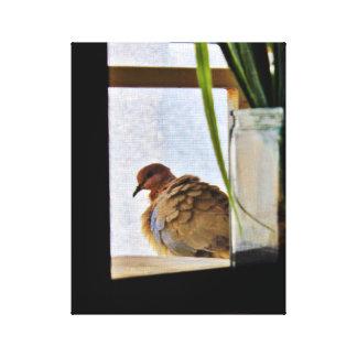 柔らかい鳩 キャンバスプリント