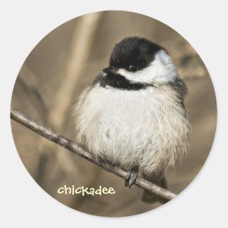 柔らかい《鳥》アメリカゴガラ-ステッカー ラウンドシール