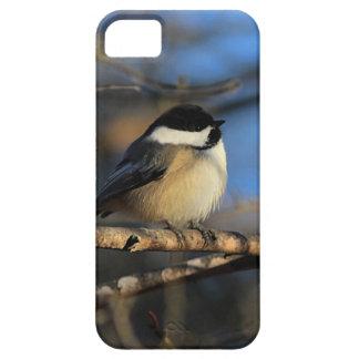 柔らかい《鳥》アメリカゴガラ iPhone SE/5/5s ケース