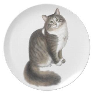柔らかいDuffyメインのあらいぐま猫のプレート プレート