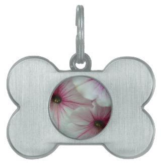 柔らかく、敏感なピンクのペチュニア ペットネームタグ
