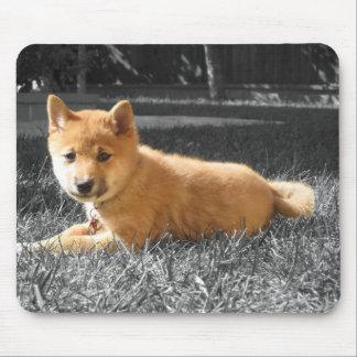 柴犬のマウスパッド マウスパッド