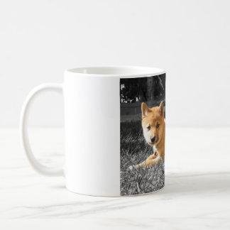 柴犬のマグ コーヒーマグカップ