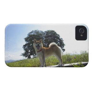 柴犬 Case-Mate iPhone 4 ケース