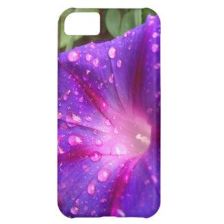 栄光、栄光、ハレルヤ聖歌! 私電話5箱 iPhone5Cケース
