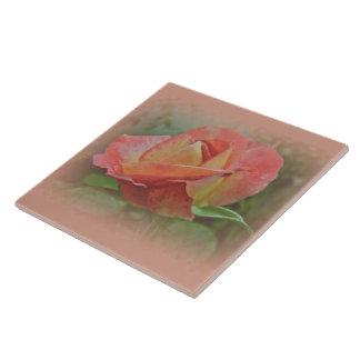 桃色のバラの花 タイル