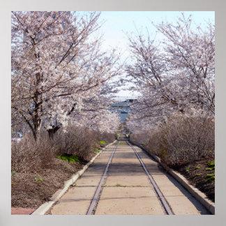 桜およびトラックフィラデルヒィア ポスター
