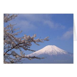 桜および富士山2 カード