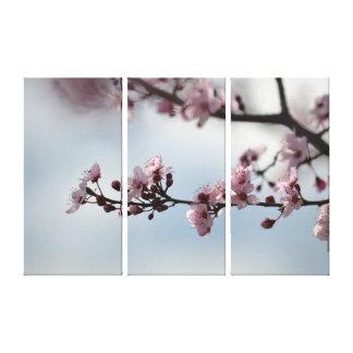 桜および空 キャンバスプリント