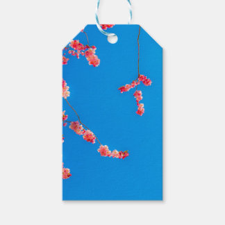 桜のギフトのラベル ギフトタグ