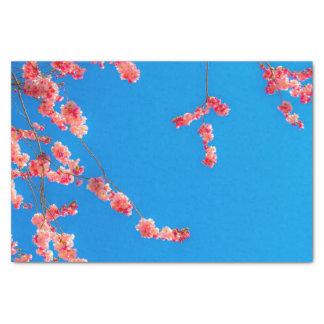 桜のティッシュペーパー 薄葉紙