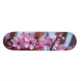桜のピンクのスタイル スケートボード